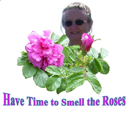 Have Time to Smell the Roses
